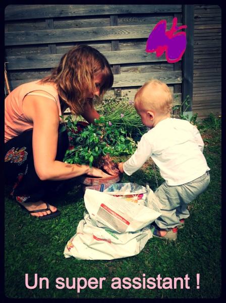 jardinage assistant