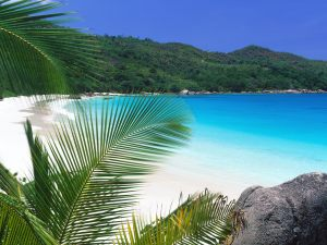 Seychelles-site-1