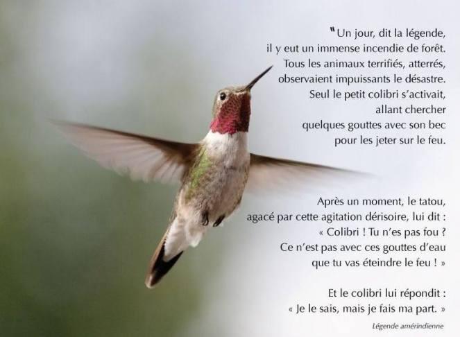 legende-du-colibri